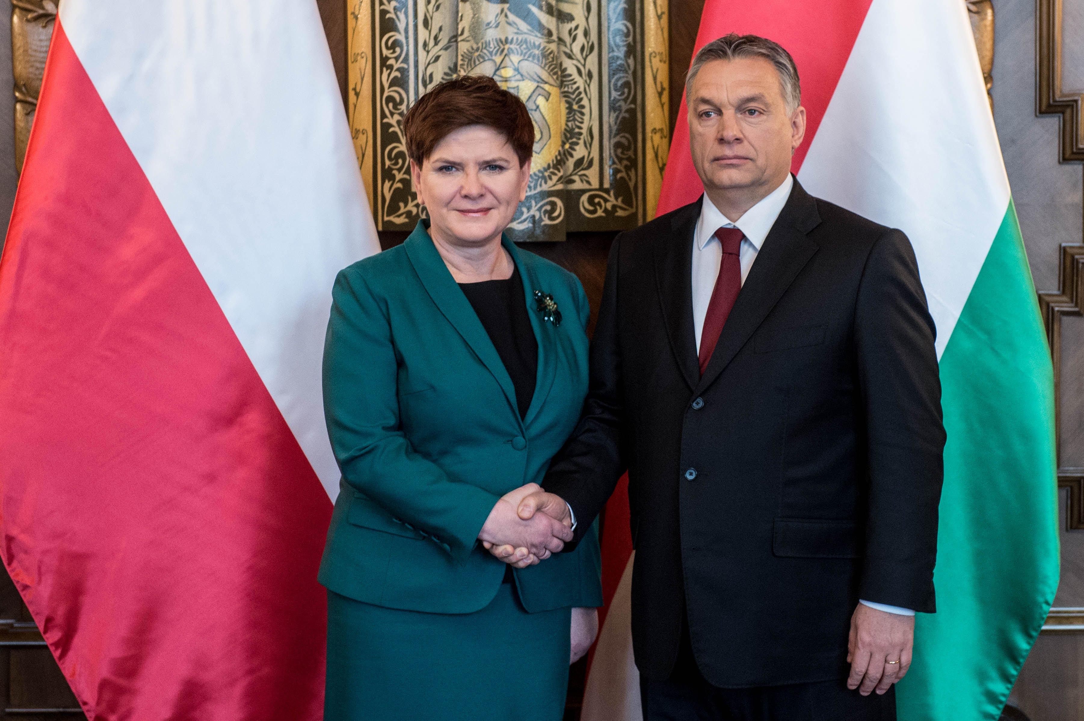 A volt lengyel miniszterelnököt nevezték ki az Auschwitz Múzeum fontos posztjára, túlélők családjai tiltakoznak « Mérce