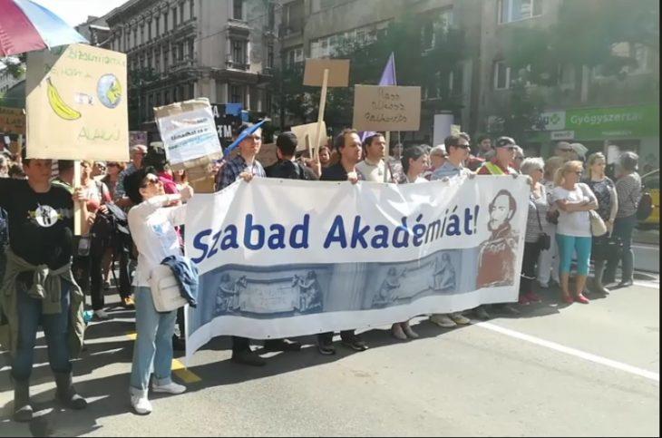 MTA, tüntetés,